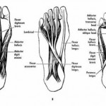 Random image: How-do-you-treat-a-strained-foot-ligament-photo